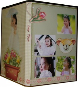 dvd jewel case with insert